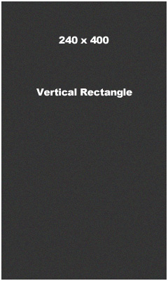 240 x 400 Vertical Rectangle Banner Ad