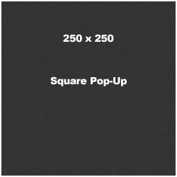 250 x 250 Square Pop-Up Banner Ad